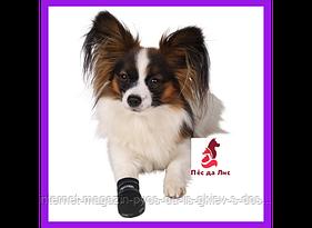 Ботинки Тrixie Walker Care Protective Boots M для собак, 2шт.