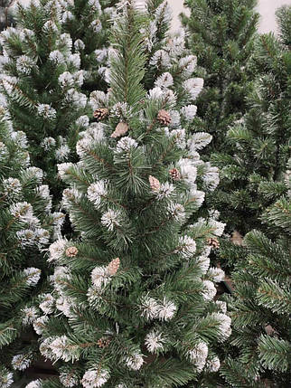 """Новогодняя елка """"Лидия"""" зеленая с белыми кончиками и шишками 2 м, фото 2"""