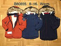 Куртки зимние на мальчика, Grace, в остатке 8,10,16 рр