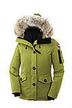 Canada Montebello Parka жіночий пуховик парку куртка канада гус, фото 8