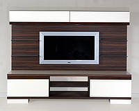 Образцы мебели из МДФ плиты для гостинной, подростков и молодёжи, прихожей,кухни, тумбы ТВ Стр.5