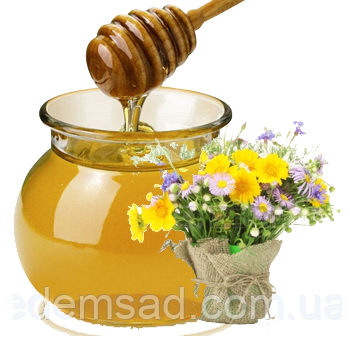 Мед гречка+різнотрав'я, 0,5л