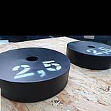 Блины металлические для штанги 25мм D, фото 4