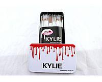 Набор профессиональный кисти для макияжа Kylie Jenner Make-up brush set 12 шт