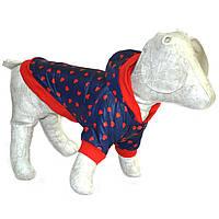 Курточка для собаки утепленная Весна
