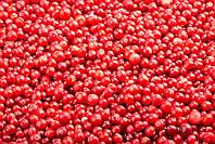 Брусниця (Брусника) ціла ягода заморожена