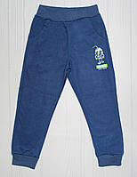 Спортивные брюки на мальчика на рост 104 см, 110 см, 116 см, 122 см (2310) р. 122 см (6-7 лет)