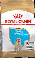 Сухой корм Royal Canin Labrador Retriever Puppy/Junior для щенков, 12КГ