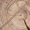Браслет 41445, длина 20 см, ширина 5.0 мм, вес 6.4 г, позолота РО, фото 4