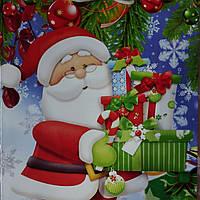 Пакет подарочный бумажный гигант вертикальный 30х45х12