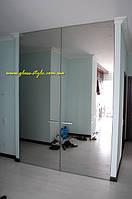 Распашные стеклянные Ддери Manet Compact, фото 1