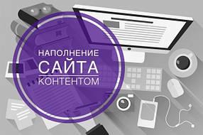 Ручное наполнение интернет магазина товарами (добавление товара) на Prom.ua, Tiu.ru, Deal.by, Satu.kz, Prom.md