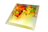 Зеркало НСК 100см х 100см, тонировка бронза, с фацетом 3см