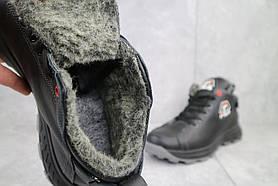Ботинки мужские Lions F3 черные (натуральная кожа, зима)