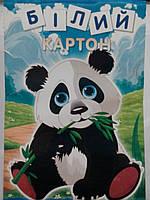 Мицар Картон білий А4, 8л. в кольор.обкл.