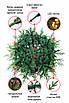 Искусственная елка Рождественская LED 210 комбинированная со светодиодами, фото 2