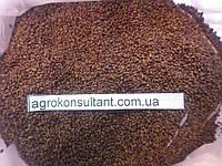 Люцерна посівна, очищені, магниченные насіння, на кормові цілі