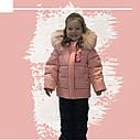 Тепла зимова куртка та напівкомбінезон для дівчинки від виробника Asiya, фото 3