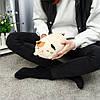 30/60 см пухлые милые Soft животных мультфильм подушку фаршированные плюшевые игрушки фаршированные щенка подушечка котенка - 1TopShop, фото 6