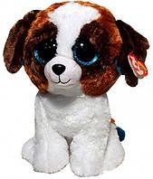 М'яка іграшка TY Beanie Boo's Цуценя Duke 25 см (37012)