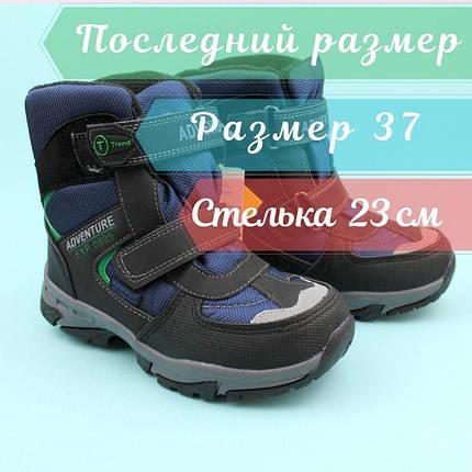 Термо ботинки для мальчика зима синие тм Том.м размер 37, фото 2