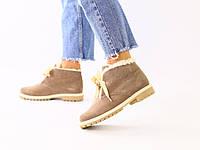 Женские зимние замшевые ботинки цвета капучино, фото 1