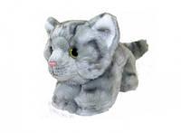 М'яка іграшка Fancy Кіт Віллі (JC-6504T)