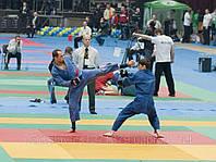Восточные боевые искусства