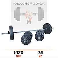 Штанга (1,8 м) + гантелі (43 см)  | 75 кг