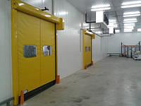Скоростные ПВХ ворота DoorHan для пищевой промышленности серии SpeedRoll SDF, фото 1