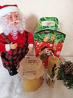 """Новорічний подарунок """"Веселих свят"""" з гречаним медом 250 мл"""