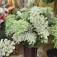 Цветы искусственные для декора и композиций Тысячелистник 66см