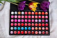 Профессиональная палитра помад 66 цветов