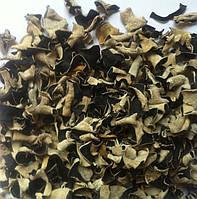 Древесный гриб черный