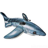 Детский надувной плотик для катания Intex 57525 «Белая Акула», 173*107 см