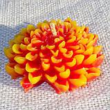 """Восковая свеча """"Хризантема"""" из пчелиного воска, фото 2"""