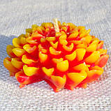 """Восковая свеча """"Хризантема"""" из пчелиного воска, фото 5"""