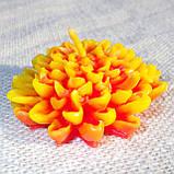 """Восковая свеча """"Хризантема"""" из пчелиного воска, фото 6"""