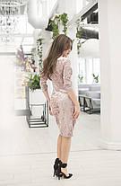 Платье бархат в расцветках 36421, фото 2