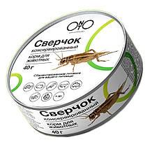 Сверчок консервированный Onto корм для насекомоядных животных 40 г