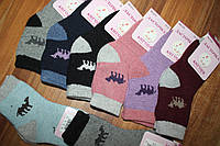 Шкарпетки Ангора дитячий Верблюд (уп.12 шт.), фото 1