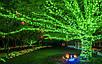 Гирлянда уличная Нить, 200 led, зеленая, белый/чёрный провод, 20м., фото 6