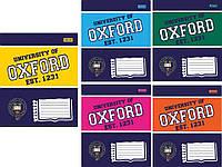 Тетради «Оксфорд колор», 12 листов, косая линия