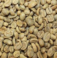 Кофе зеленый в зернах Доминикана Барахона АА (ОРИГИНАЛ), арабика Gardman (Гардман), фото 1