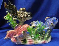 Рыбы фарфор
