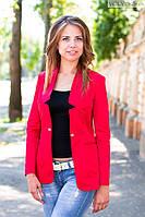 Пиджак женский удлиненный с золотой застежкой - Красный
