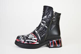 Ботинки кожаные с принтом Evromoda 1421900, фото 2
