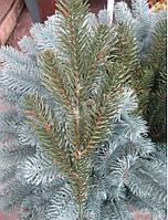 Литая еловая ветка, зеленая на 5 веточек