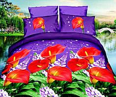 Комплект постельного белья от украинского производителя Polycotton Двуспальный T-90901