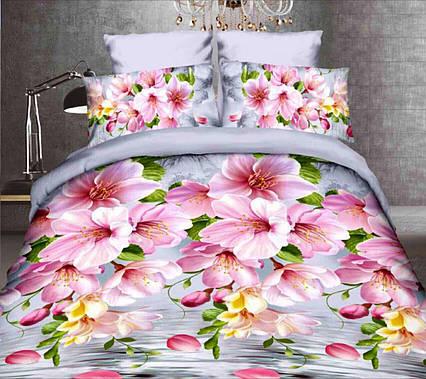 Комплект постельного белья от украинского производителя Polycotton Двуспальный T-90927, фото 2